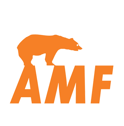 Подвесные потолки AMF: форматы