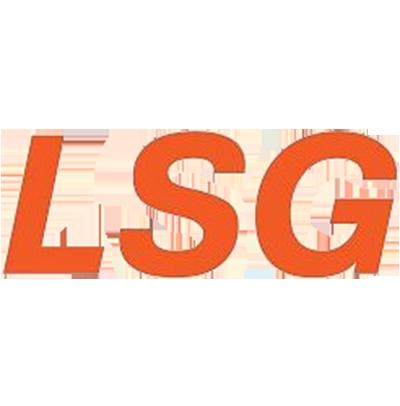 Подвесная система LSG